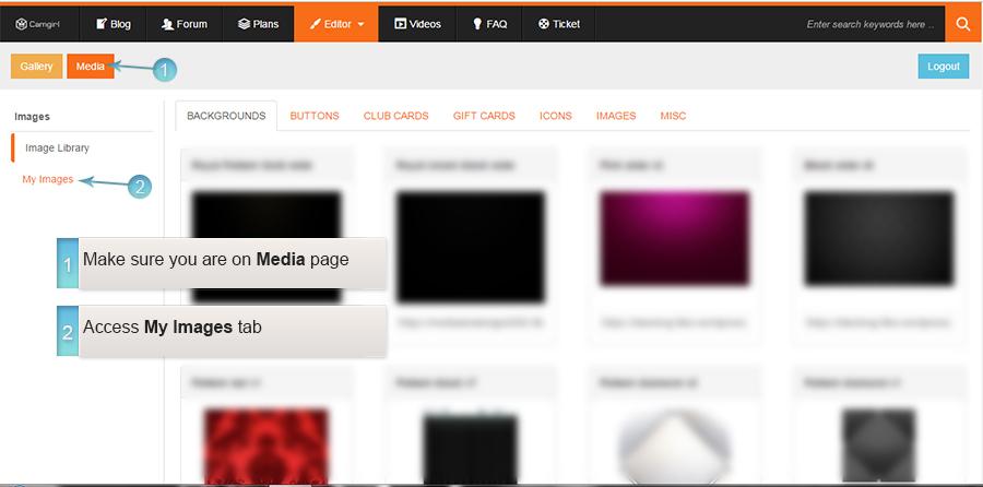 Access Media Library